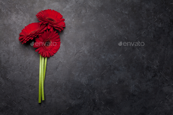 Valentines day card with gerbera flower bouquet - Stock Photo - Images