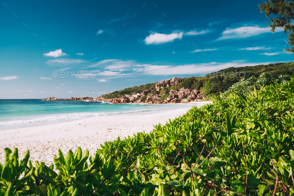 Grand Anse beach at La Digue island in Seychelles. White sandy beach with blue ocean lagoon. Green - Stock Photo - Images