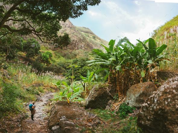Female hiker take a rest in wondrous lush canyon full of exotic vegetation. Plenty of tropical fruit - Stock Photo - Images