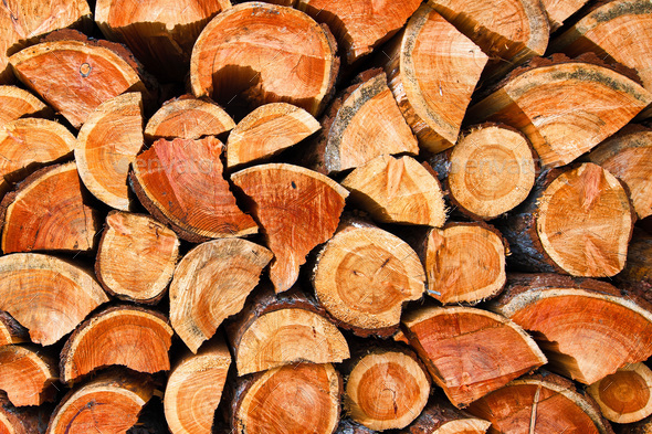 Chopped dry wood logs - Stock Photo - Images