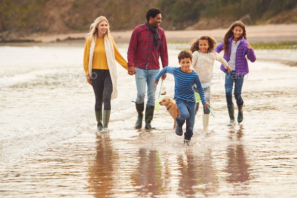 Multi-Cultural Family With Pet Dog Walking Along Beach Shoreline On Winter Vacation - Stock Photo - Images