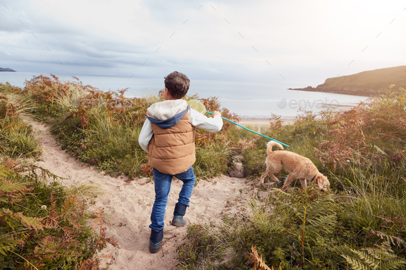 Boy Carrying Fishing Net Exploring Sand Dunes With Pet Dog - Stock Photo - Images