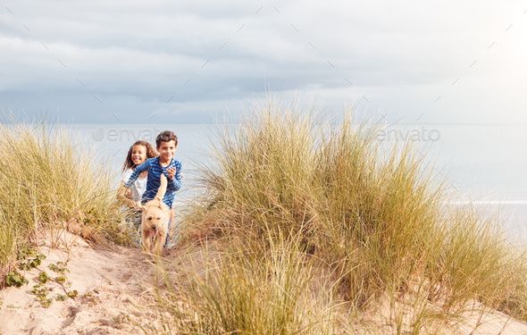 Two Children With Pet Dog Having Fun Exploring In Sand Dunes On Winter Beach Vacation - Stock Photo - Images