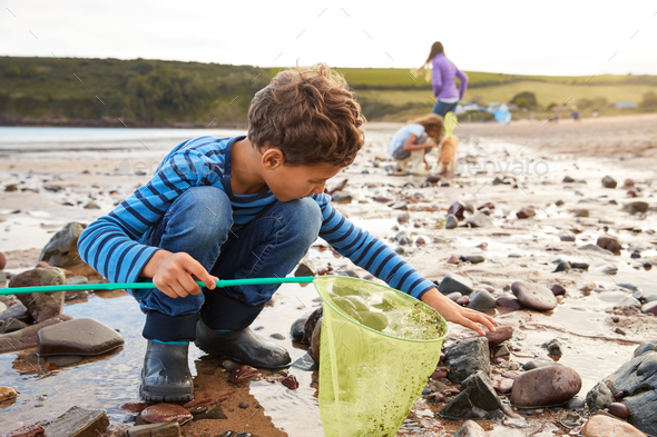 Children With Pet Dog Looking In Rockpools On Winter Beach Vacation - Stock Photo - Images