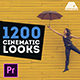 LUTs Color Presets Pack | Cinematic Looks - Premiere Pro - VideoHive Item for Sale