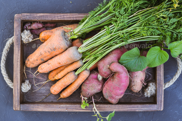 Sweet potato and carrots in a wooden box. - Stock Photo - Images