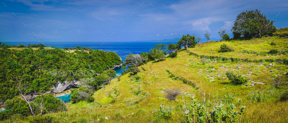 Trees on the Rocktop near Atuh Beach, Nusa Penida, Bali Indonesia - Stock Photo - Images