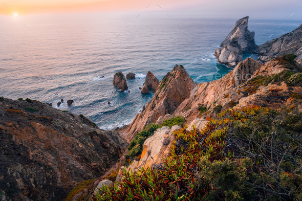 Praia da Ursa Beach at golden burn sunset. Flowers in foreground and surreal scenery. Sintra - Stock Photo - Images