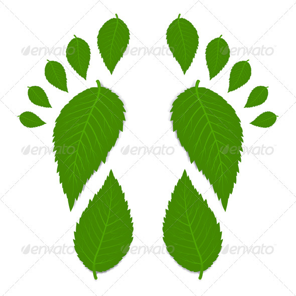Green Footprint From Leaves - Flowers & Plants Nature