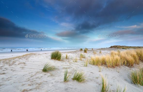 view on big beach on Schiermonnikoog - Stock Photo - Images