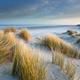 sand dunes on windy North sea beach - PhotoDune Item for Sale