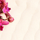 Blooming Orchid on the Sand - PhotoDune Item for Sale