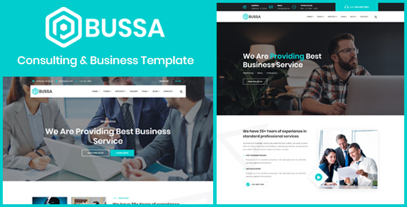 Bussa - Consulting & Business Template