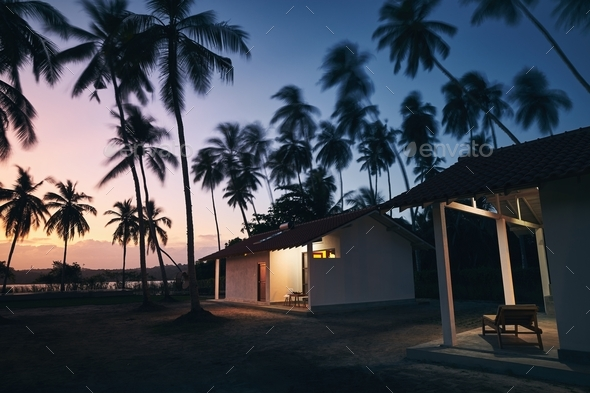 Bungalows under coconut palm trees - Stock Photo - Images