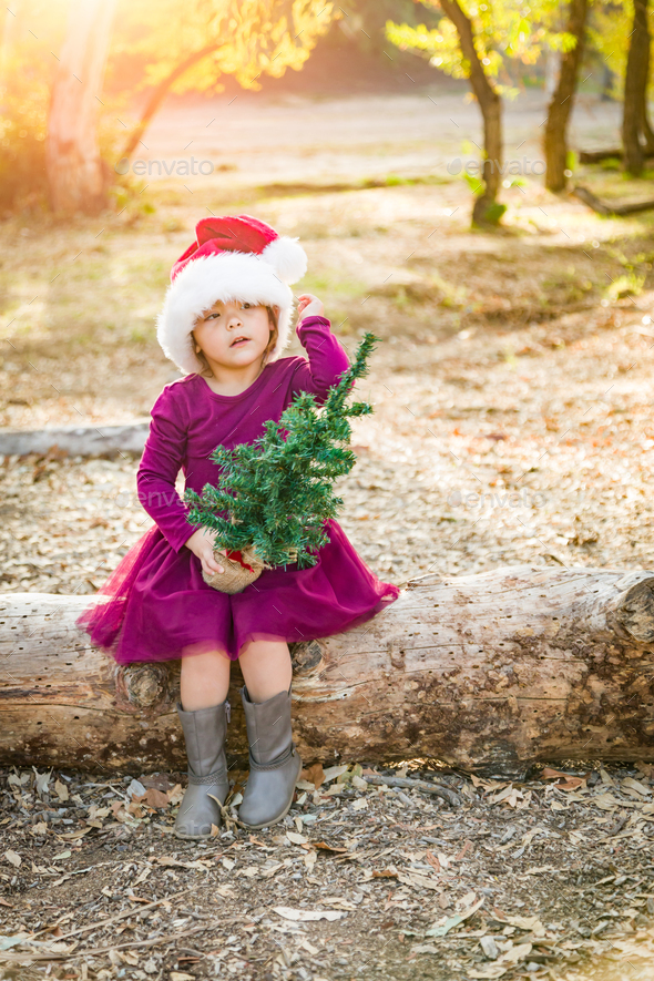 Cute Mixed Race Young Baby Girl Having Fun With Santa Hat and Christmas Tree Outdoors On Log - Stock Photo - Images
