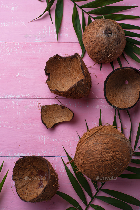Coconuts and palm leaves on pink - Stock Photo - Images