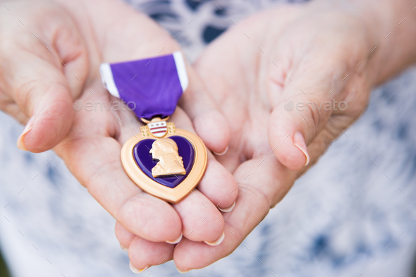 Senior Woman Holding The Military Purple Heart Medal In Her Hands. - Stock Photo - Images