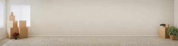 Banner of Empty Room with Blank Wall, Boxes and Plants. - Stock Photo - Images