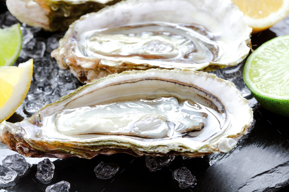 Set of opened oysters - Stock Photo - Images