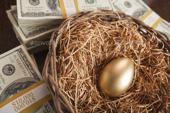 Golden Egg in Nest and Thousands of Dollars Surrounding - Stock Photo - Images