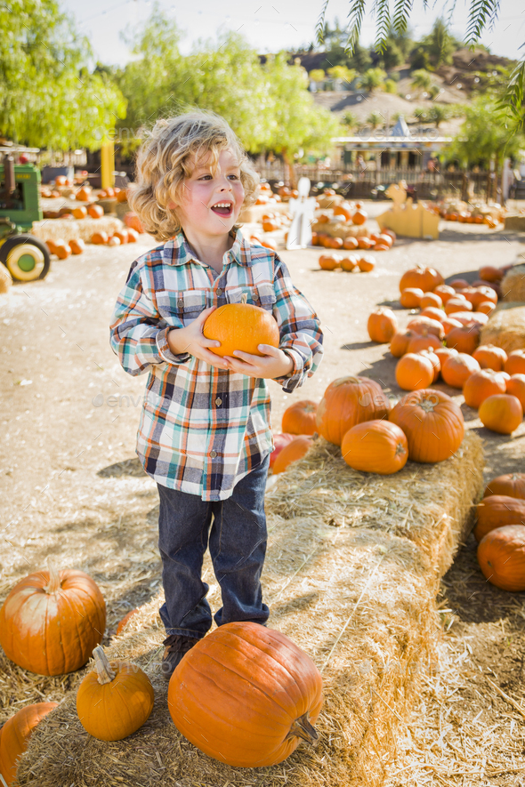 Little Boy Holding His Pumpkin at a Pumpkin Patch - Stock Photo - Images