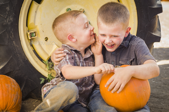 Two Boys Sitting Against Tractor Tire Holding Pumpkins Whispering Secrets - Stock Photo - Images