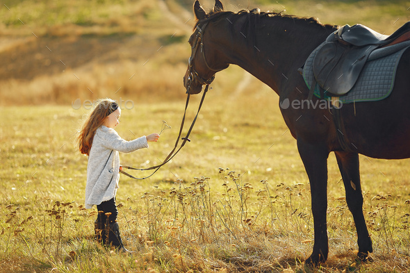 Cute little girl in a autumn field with horse - Stock Photo - Images