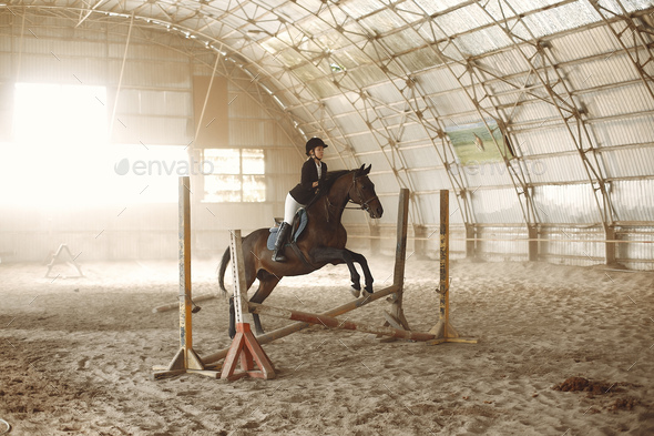 The rider in black form trains with the horse - Stock Photo - Images