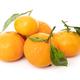 mandarins with leaf isolated on white background - PhotoDune Item for Sale