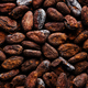 Cacao beans on plate closeup - PhotoDune Item for Sale