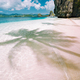 Palm shade on exotic tropical sandy beach and turquoise ocean in background - PhotoDune Item for Sale