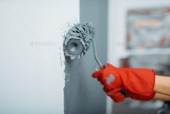 Female house painter hand with paint roller - Stock Photo - Images