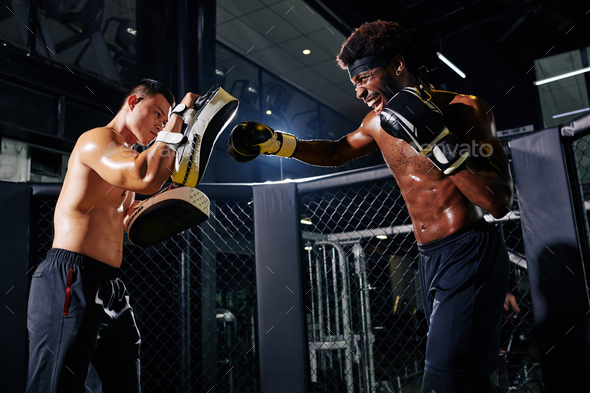 Boxers Training On Ring - Stock Photo - Images