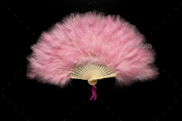 Pink Chinese folding fan on a black background - Stock Photo - Images
