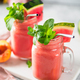 Watermelon and Peach Smoothies, copy space - PhotoDune Item for Sale