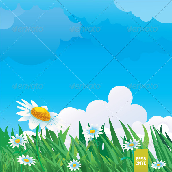 Summer Meadow - Nature Conceptual