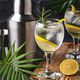 Gin tonic cocktail with lemon - PhotoDune Item for Sale