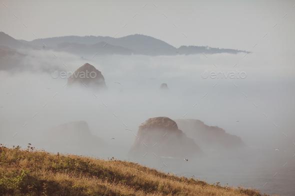 Oregon coast - Stock Photo - Images