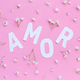 Flowers and word AMOR on a light pink background - PhotoDune Item for Sale