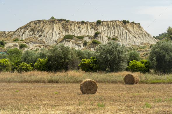 Rural landscape near Policoro, Basilicata - Stock Photo - Images