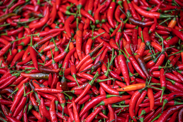 Red hot Chillies on sale - Stock Photo - Images