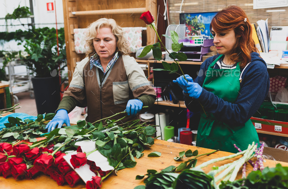 Two florists work in a nursery. - Stock Photo - Images