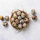 Quail eggs on light background - PhotoDune Item for Sale
