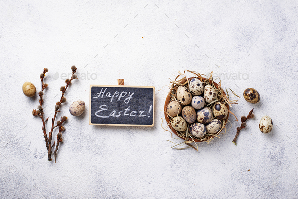 Easter background with quail eggs and pussy willow - Stock Photo - Images
