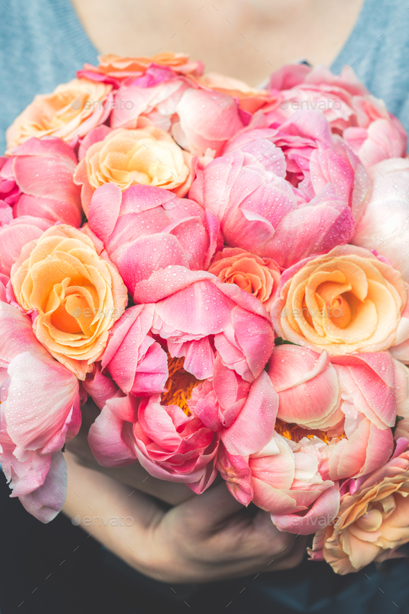 Fresh bunch of pink peonies and roses - Stock Photo - Images