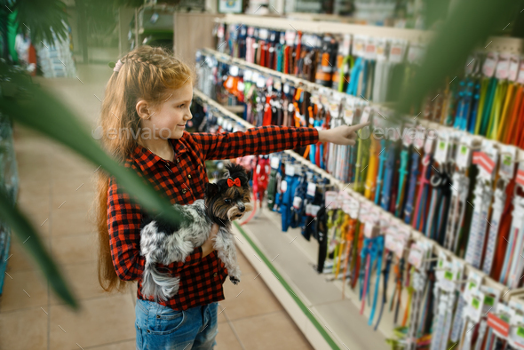 Little girl choosing leash and collar, pet store - Stock Photo - Images