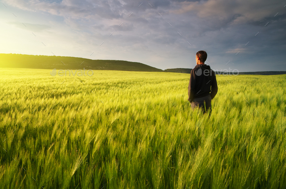 Man in meadow green meadow - Stock Photo - Images