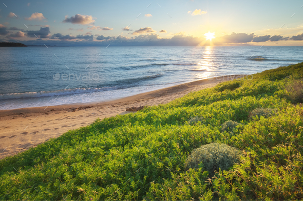 Spring coast on the sea. - Stock Photo - Images