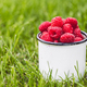 Raspberries in a cup on grass. Fall mood. Summer time. Copy space - PhotoDune Item for Sale