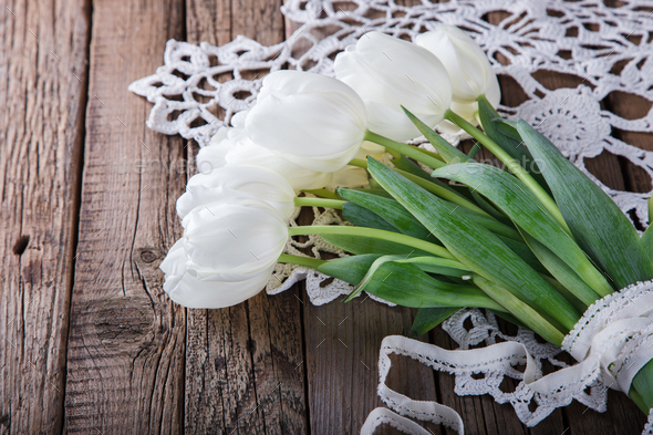 bouquet of white tulips - Stock Photo - Images